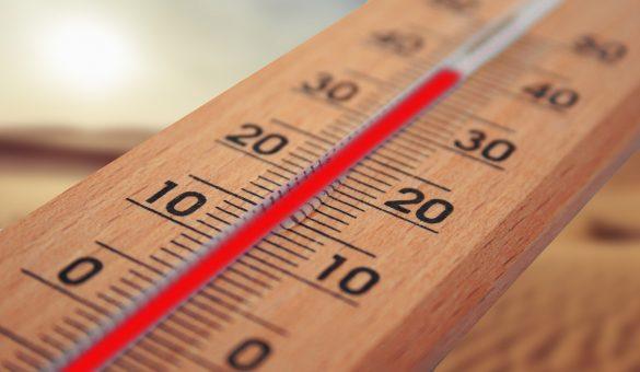 Cigusto Utiliser le contrôle de température